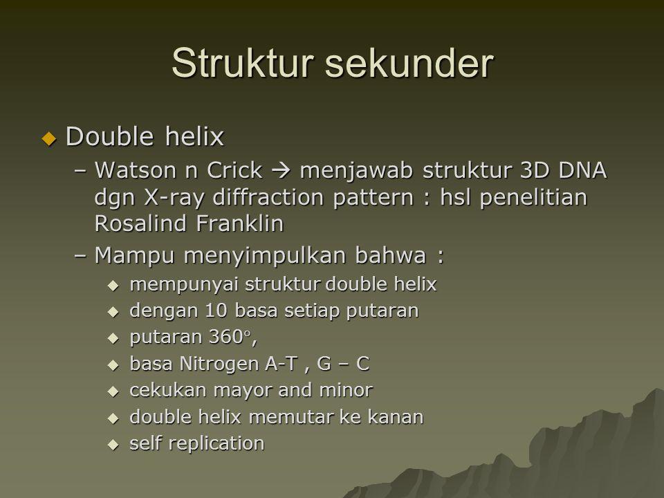 Struktur sekunder Double helix