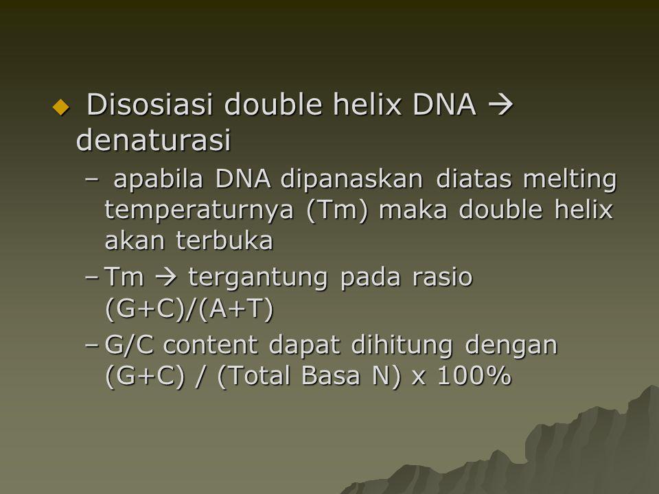 Disosiasi double helix DNA  denaturasi