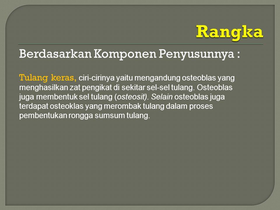 Rangka Berdasarkan Komponen Penyusunnya :