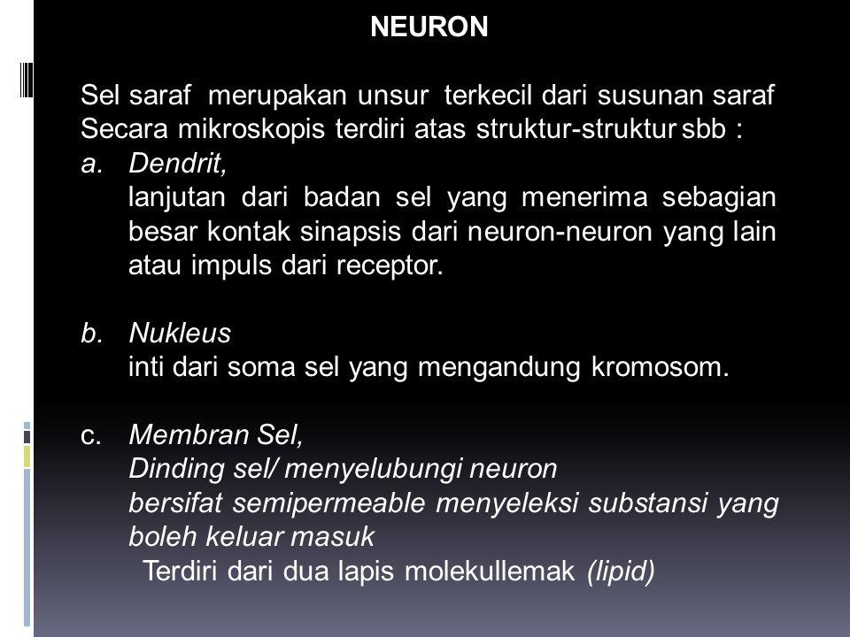 NEURON Sel saraf merupakan unsur terkecil dari susunan saraf. Secara mikroskopis terdiri atas struktur-struktur sbb :