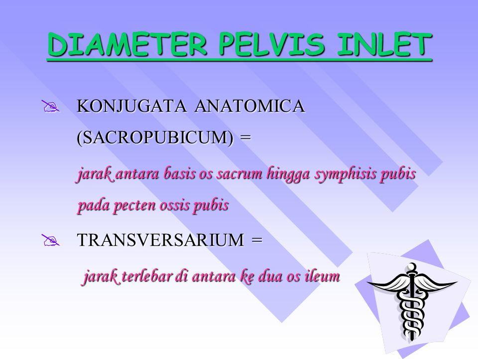 DIAMETER PELVIS INLET KONJUGATA ANATOMICA (SACROPUBICUM) =