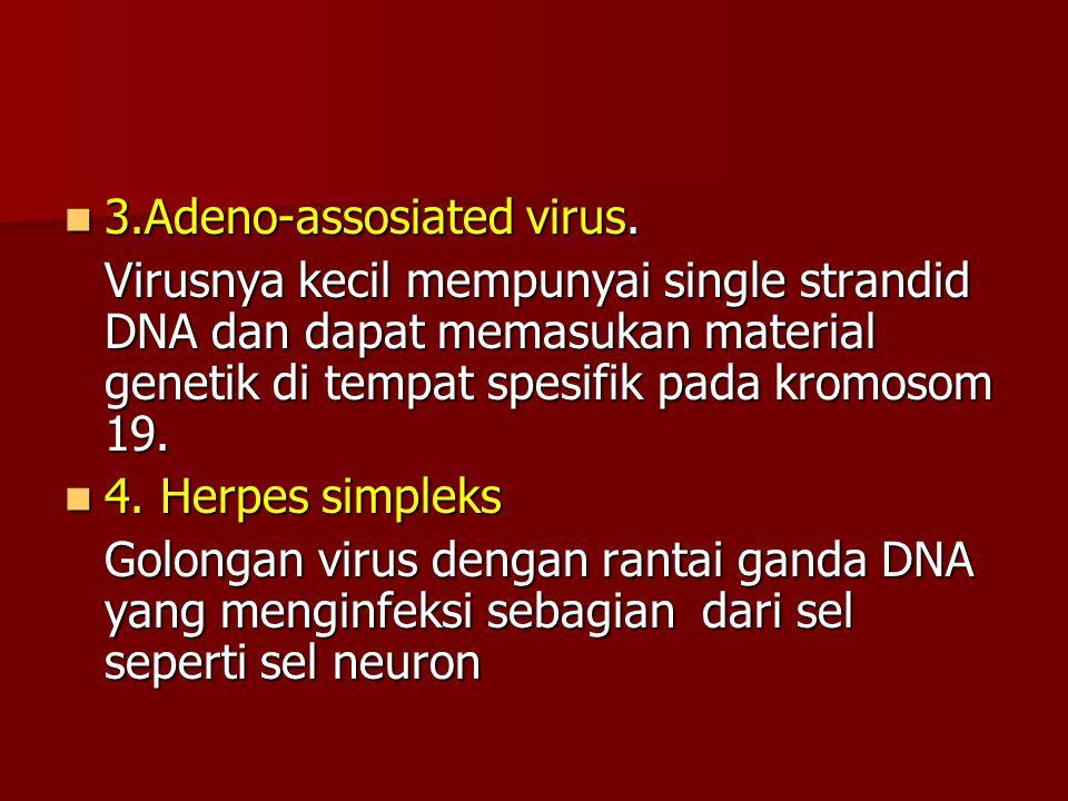 3.Adeno-assosiated virus.