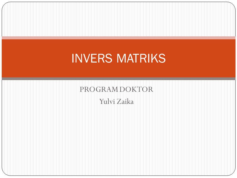 PROGRAM DOKTOR Yulvi Zaika