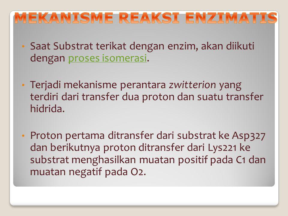 MEKANISME REAKSI ENZIMATIS