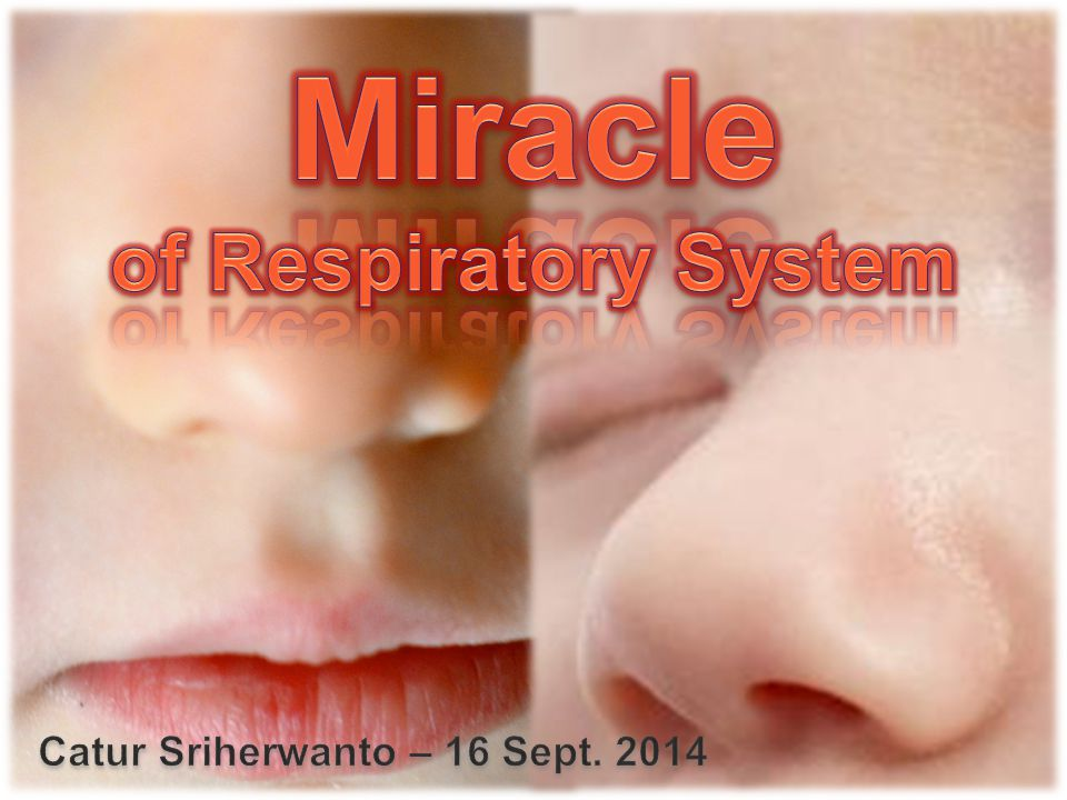 Miracle of Respiratory System