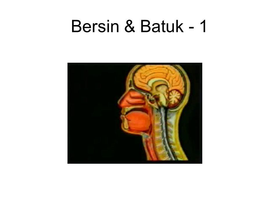 Bersin & Batuk - 1
