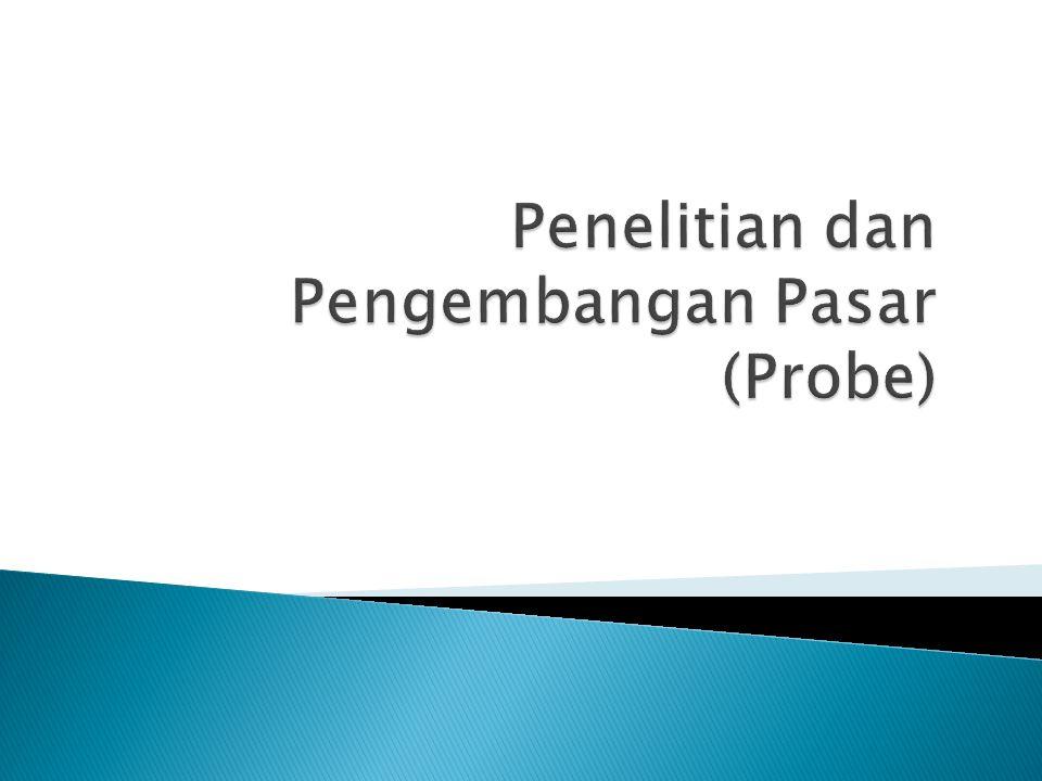 Penelitian dan Pengembangan Pasar (Probe)