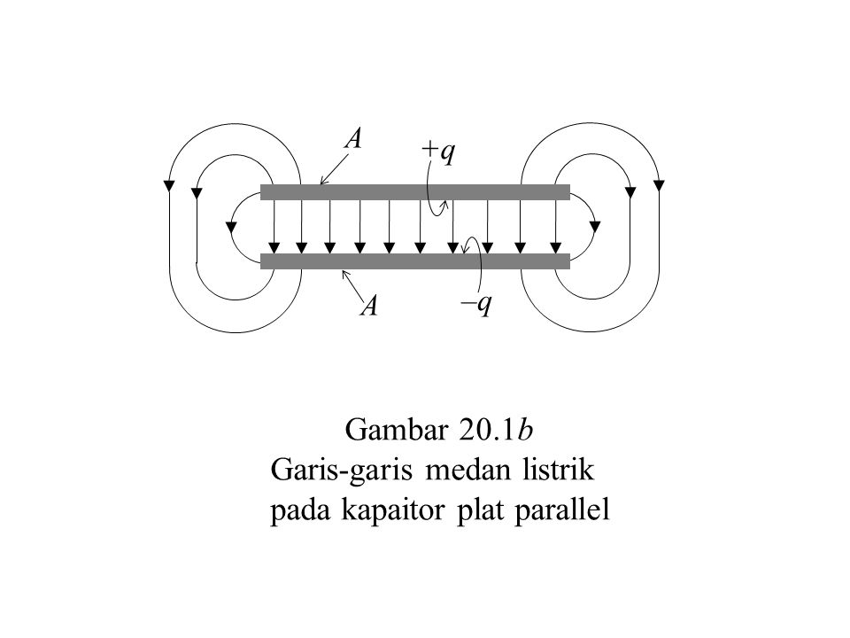 Garis-garis medan listrik pada kapaitor plat parallel