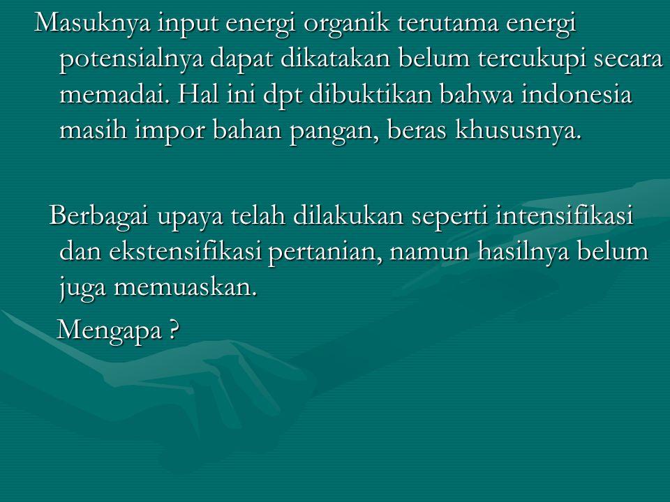 Masuknya input energi organik terutama energi potensialnya dapat dikatakan belum tercukupi secara memadai. Hal ini dpt dibuktikan bahwa indonesia masih impor bahan pangan, beras khususnya. Berbagai upaya telah dilakukan seperti intensifikasi dan ekstensifikasi pertanian, namun hasilnya belum juga memuaskan. Mengapa