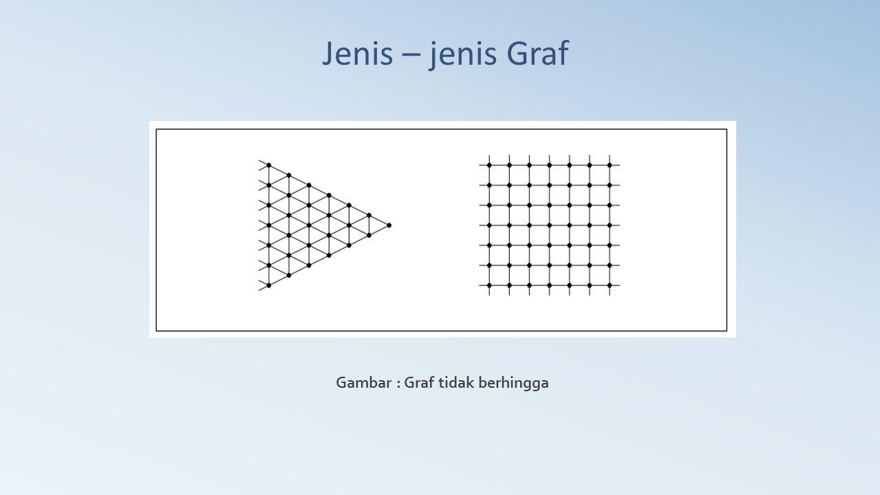 Gambar : Graf tidak berhingga