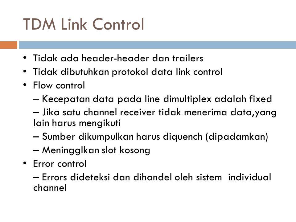 TDM Link Control