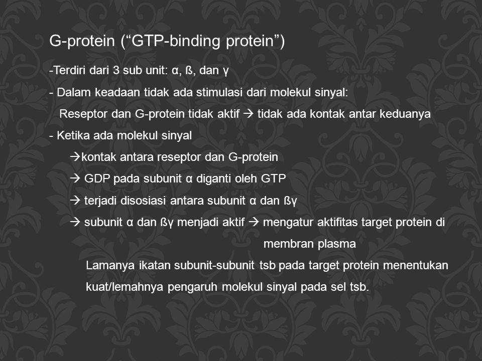 G-protein ( GTP-binding protein )