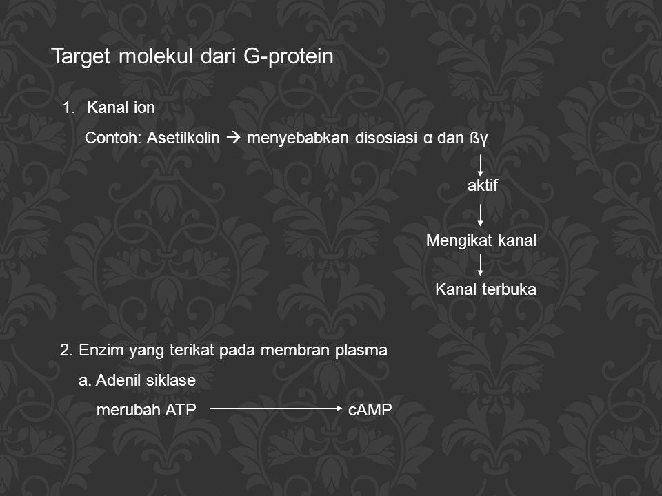 Target molekul dari G-protein