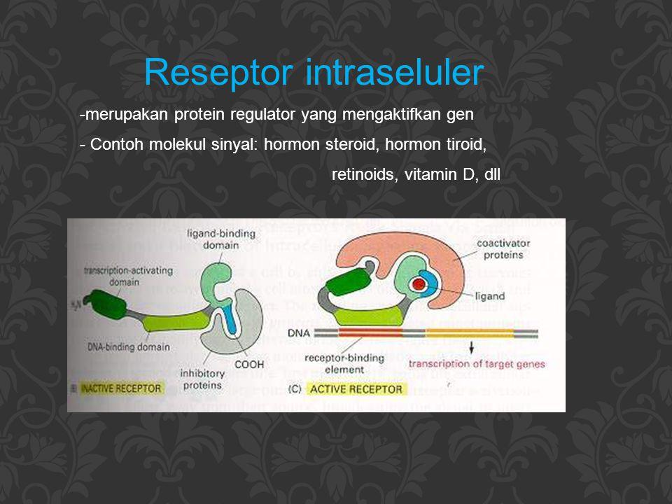 Reseptor intraseluler