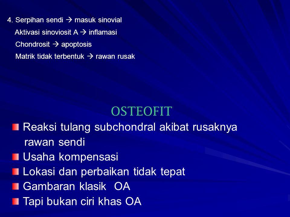 OSTEOFIT Reaksi tulang subchondral akibat rusaknya rawan sendi