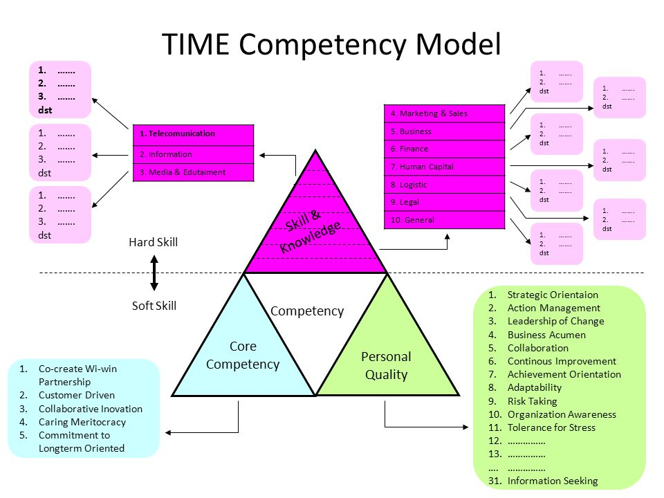TIME Competency Model Skill & Knowledge Competency Personal Quality