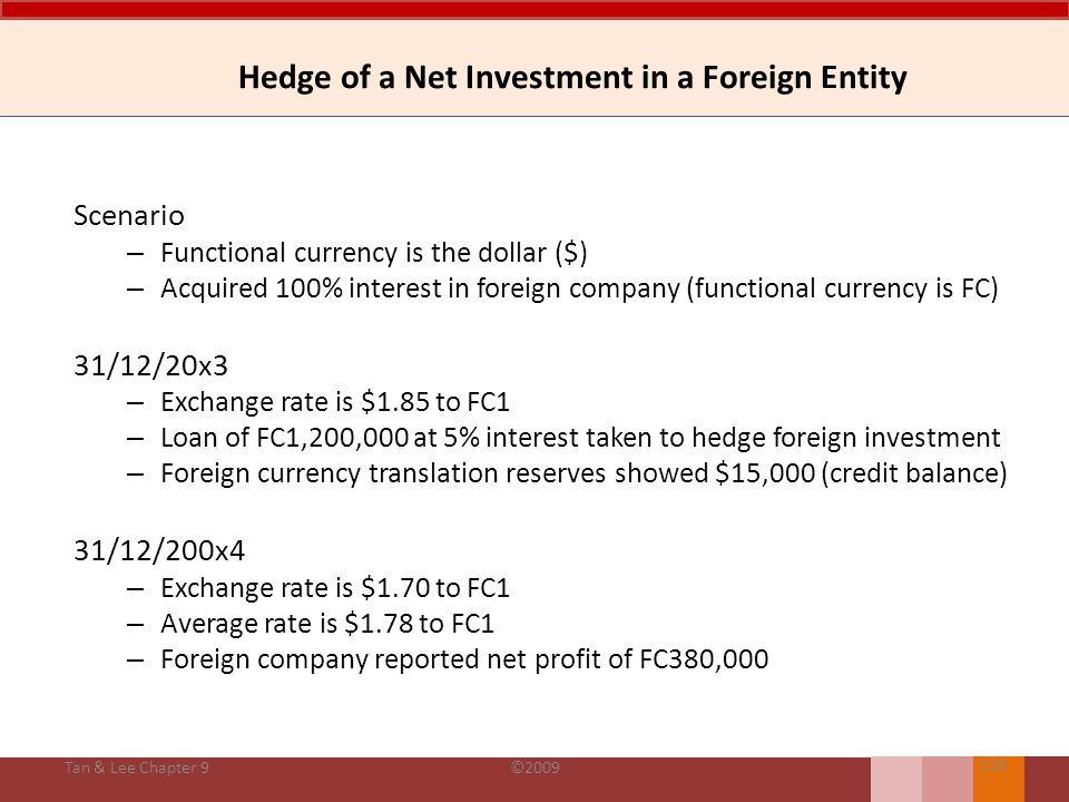 Hedge of a Net Investment in a Foreign Entity