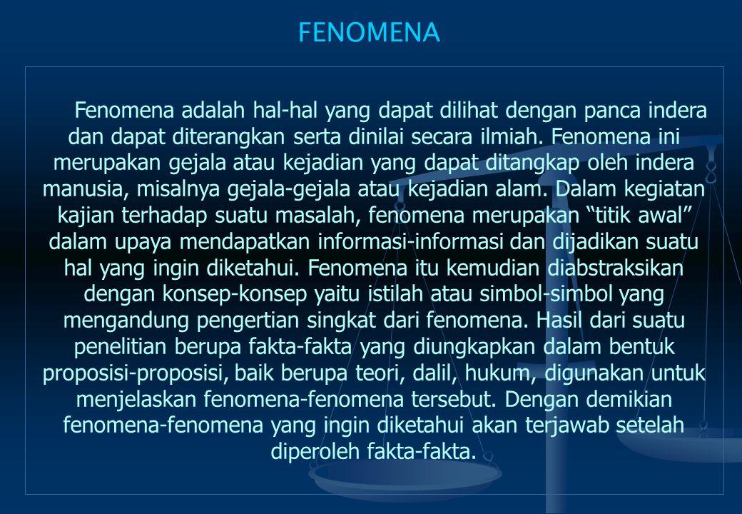 FENOMENA
