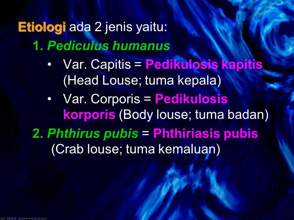 Etiologi ada 2 jenis yaitu: