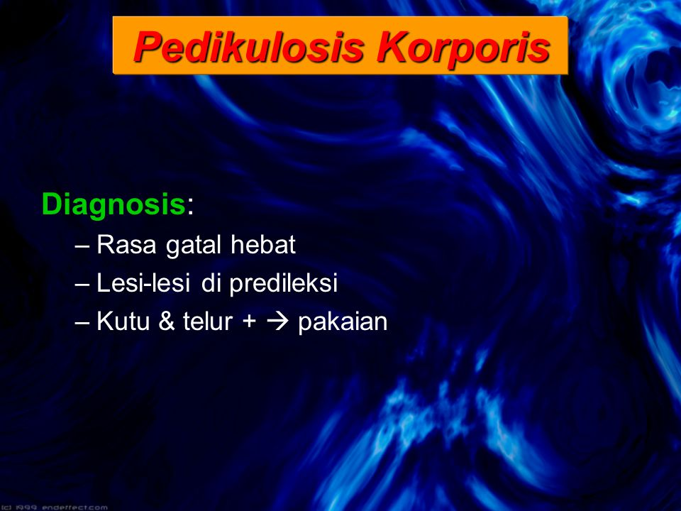 Pedikulosis Korporis Diagnosis: Rasa gatal hebat