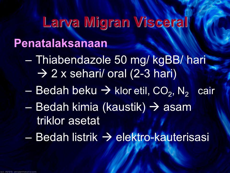 Larva Migran Visceral Penatalaksanaan
