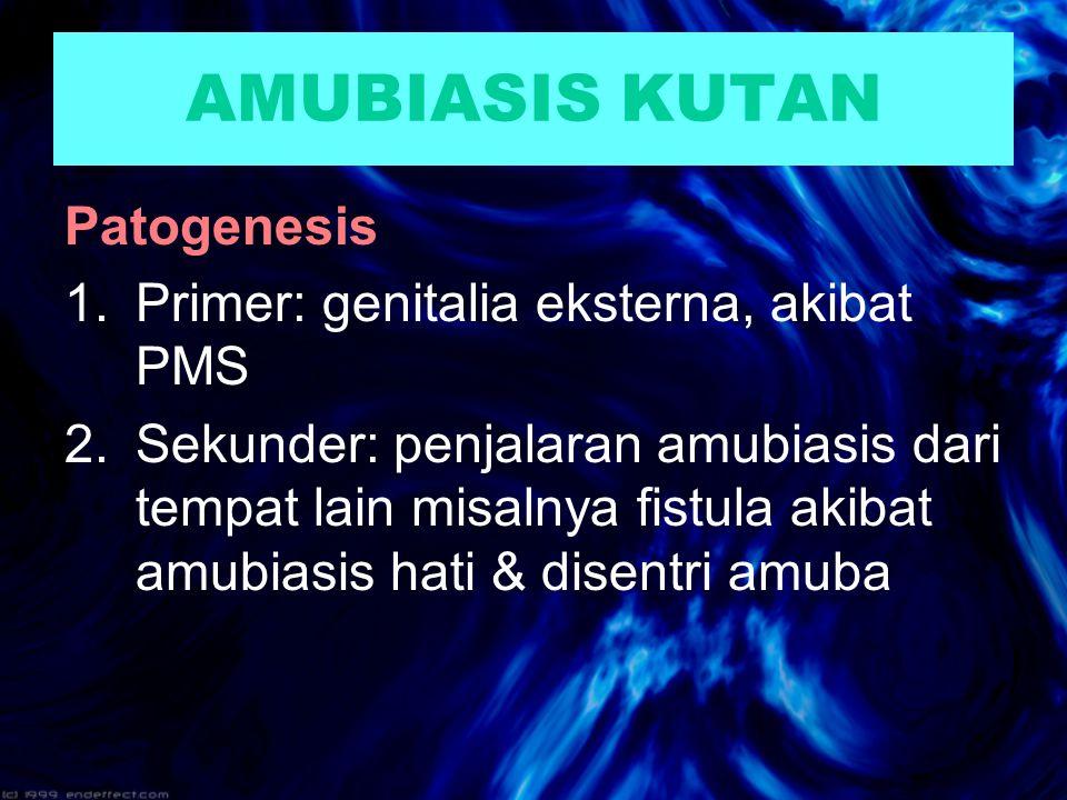 AMUBIASIS KUTAN Patogenesis Primer: genitalia eksterna, akibat PMS