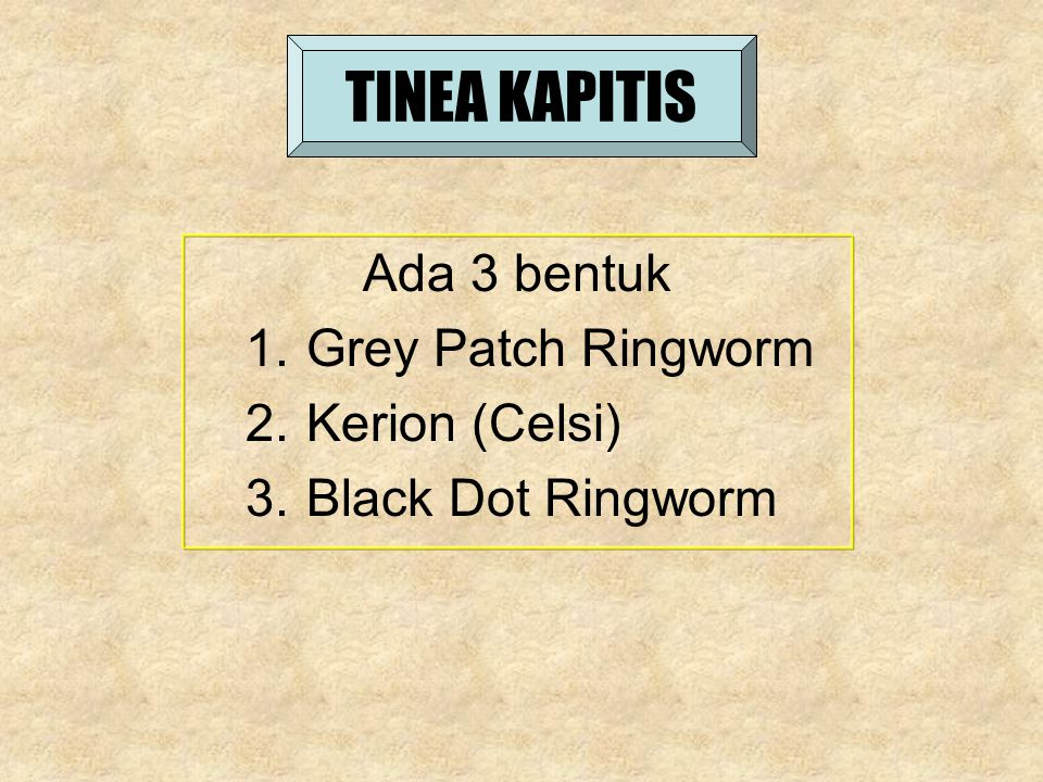 TINEA KAPITIS Ada 3 bentuk Grey Patch Ringworm Kerion (Celsi)