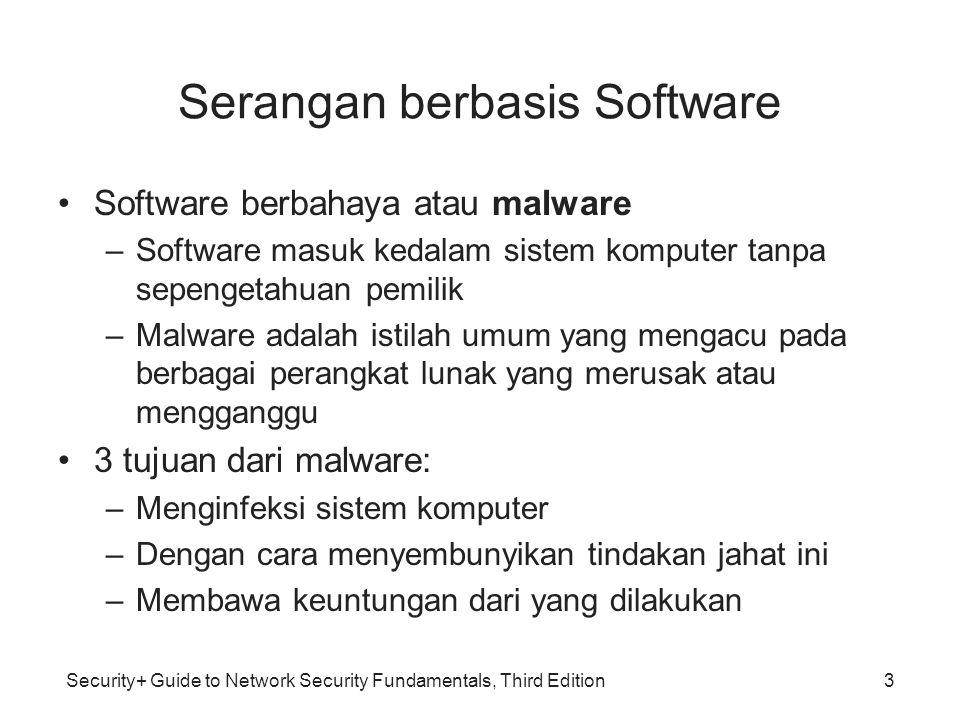 Serangan berbasis Software