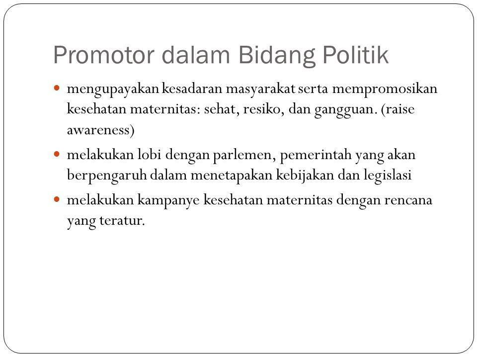 Promotor dalam Bidang Politik