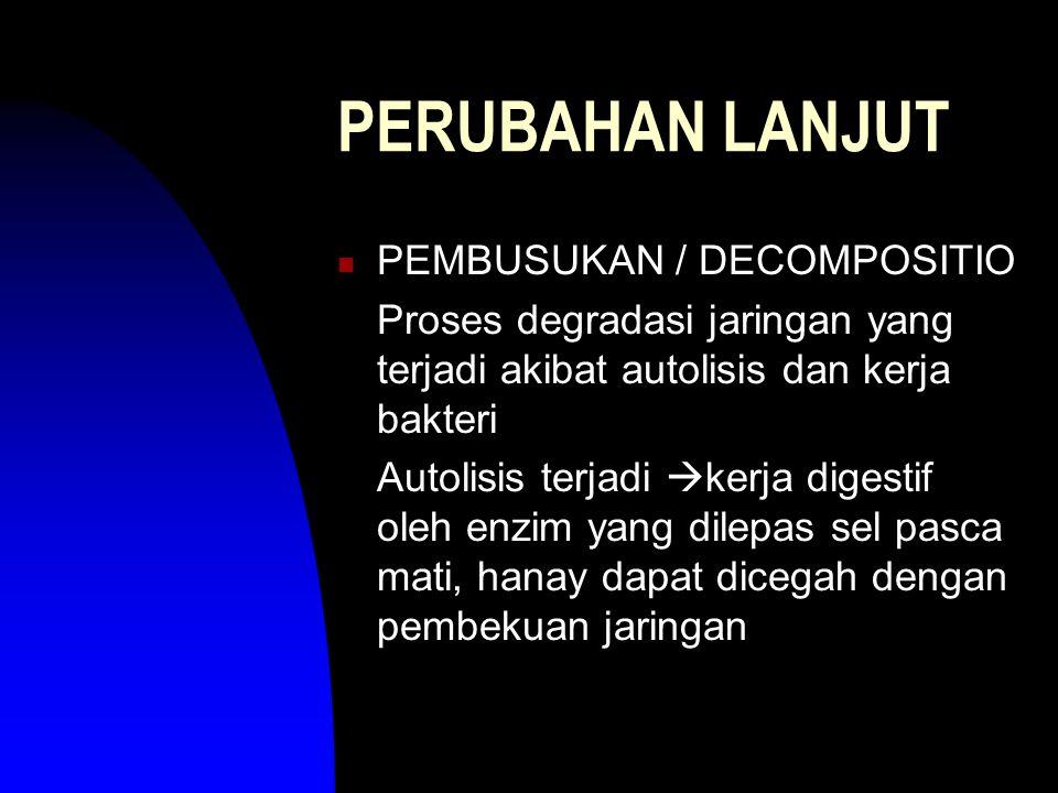 PERUBAHAN LANJUT PEMBUSUKAN / DECOMPOSITIO