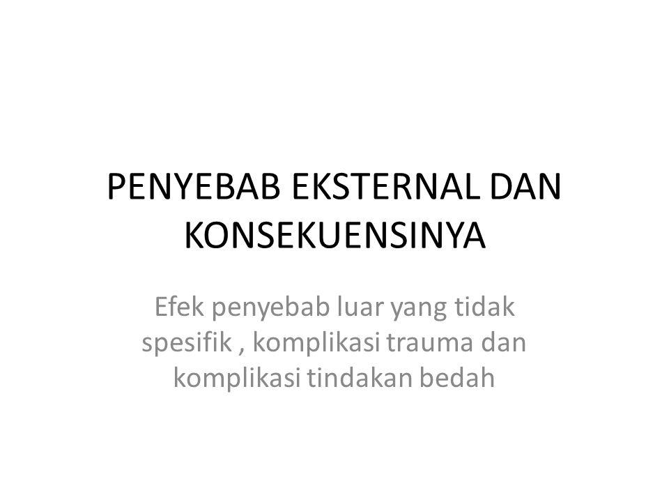 PENYEBAB EKSTERNAL DAN KONSEKUENSINYA