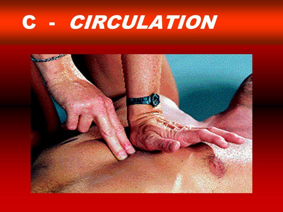 C - CIRCULATION