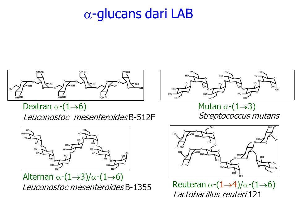 -glucans dari LAB Dextran -(16) Mutan -(13)