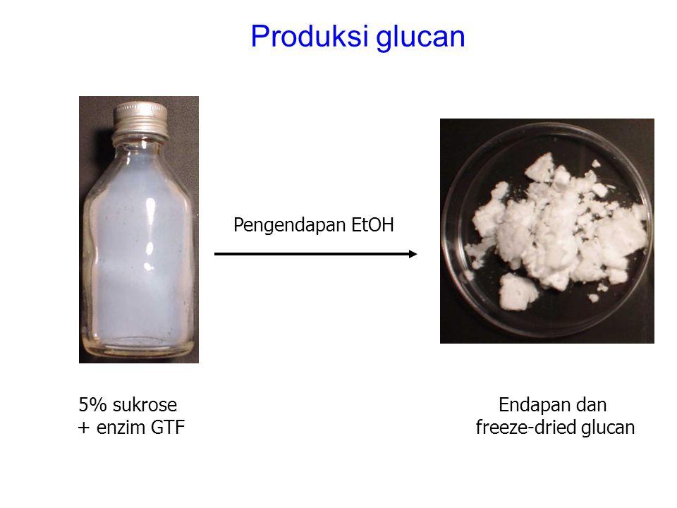 Produksi glucan Pengendapan EtOH 5% sukrose + enzim GTF Endapan dan