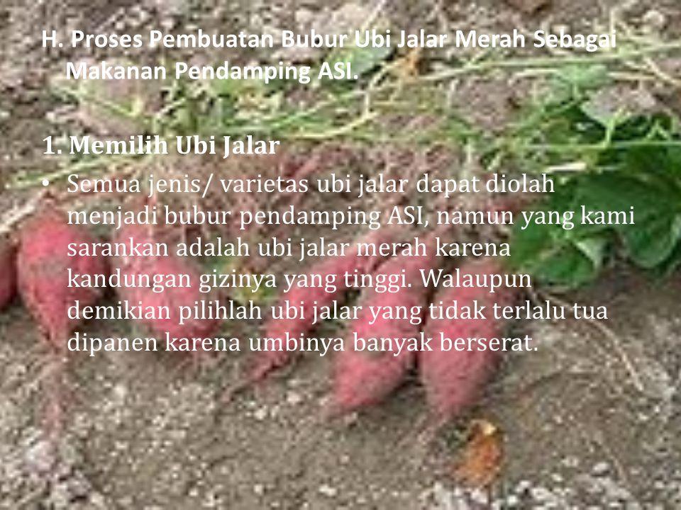 H. Proses Pembuatan Bubur Ubi Jalar Merah Sebagai Makanan Pendamping ASI.