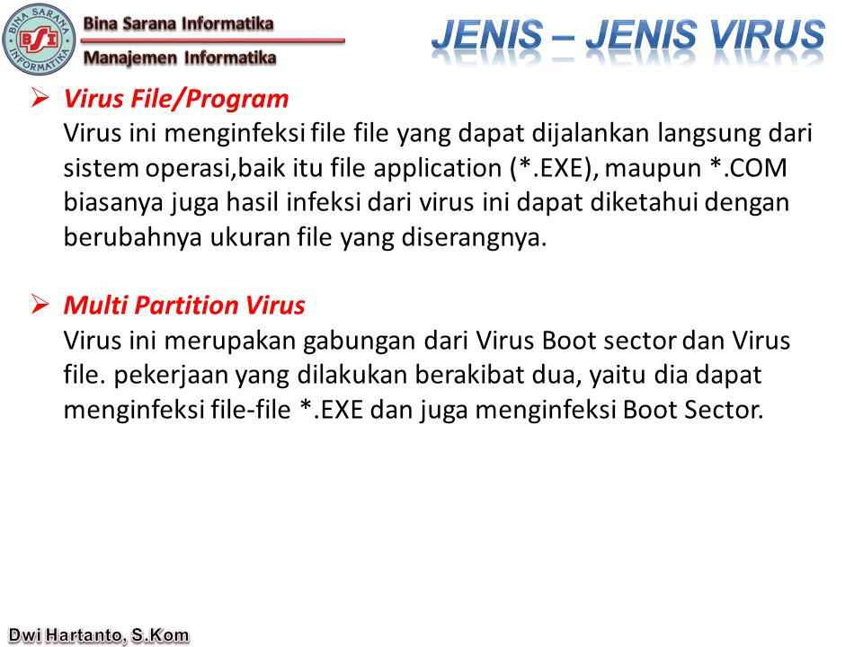 JENIS – JENIS VIRUS Virus File/Program