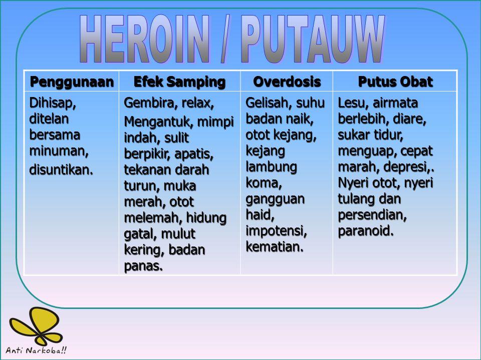 HEROIN / PUTAUW Penggunaan Efek Samping Overdosis Putus Obat