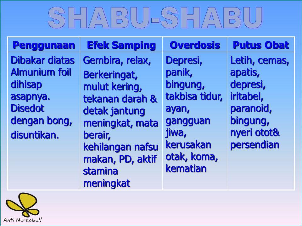 SHABU-SHABU Penggunaan Efek Samping Overdosis Putus Obat