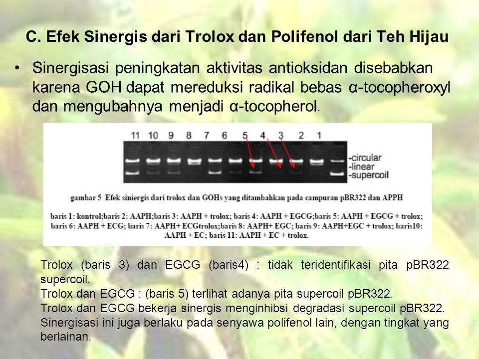 C. Efek Sinergis dari Trolox dan Polifenol dari Teh Hijau