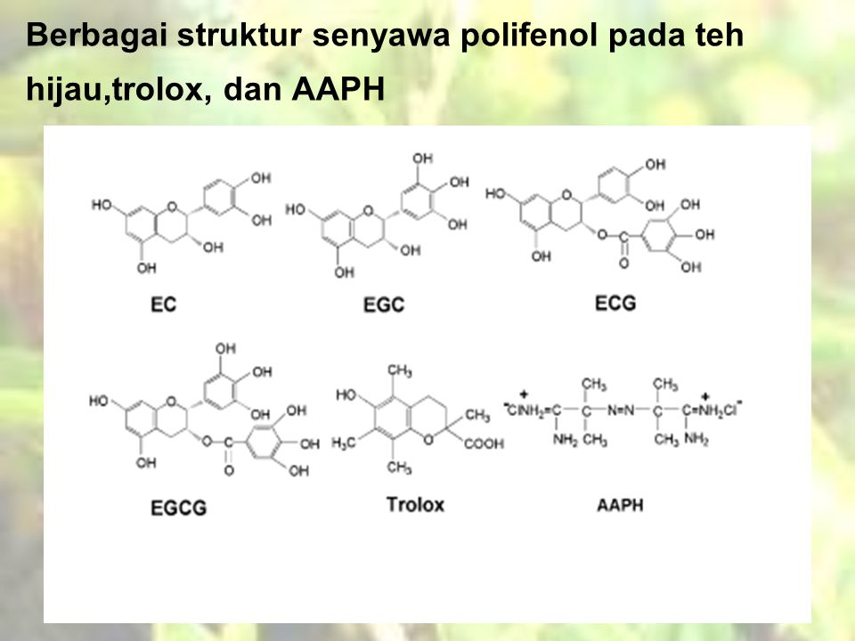 Berbagai struktur senyawa polifenol pada teh hijau,trolox, dan AAPH