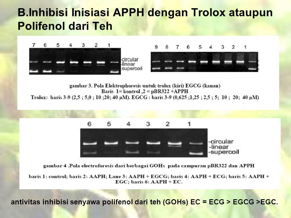B.Inhibisi Inisiasi APPH dengan Trolox ataupun Polifenol dari Teh