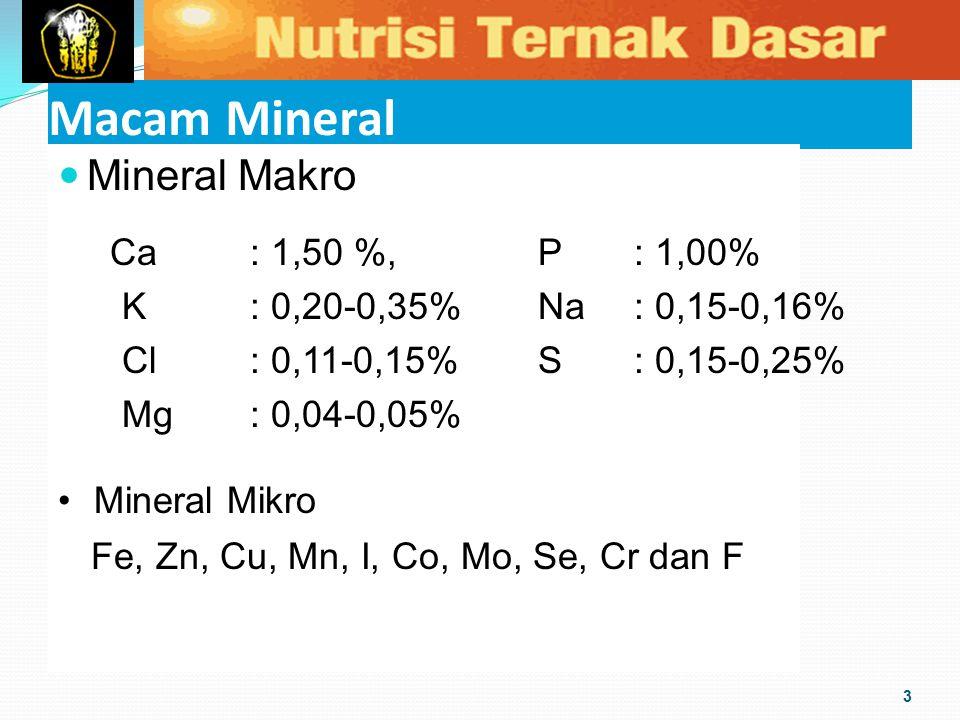 Macam Mineral Mineral Makro Ca : 1,50 %, P : 1,00%