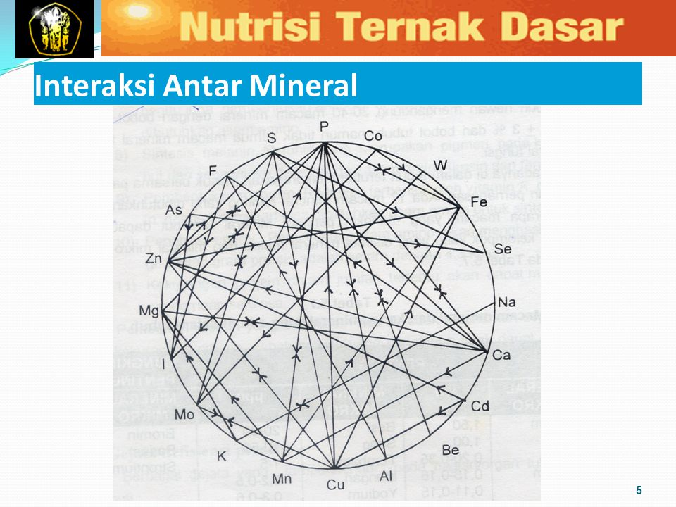Interaksi Antar Mineral