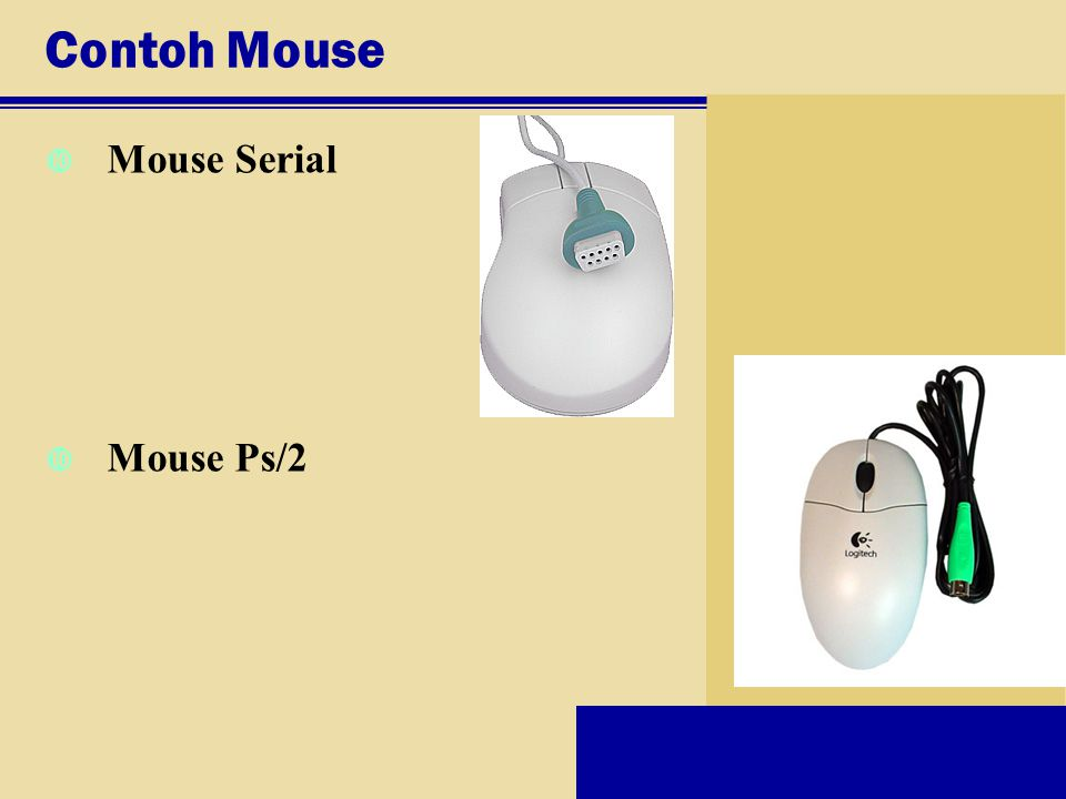 Contoh Mouse Mouse Serial Mouse Ps/2