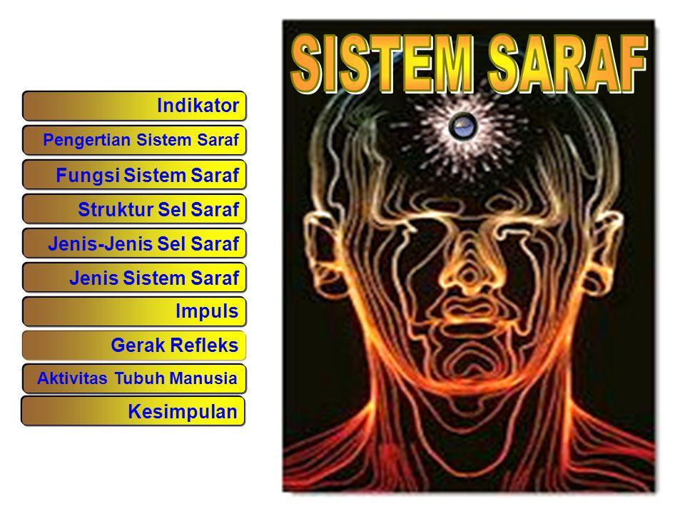 SISTEM SARAF Indikator Fungsi Sistem Saraf Struktur Sel Saraf