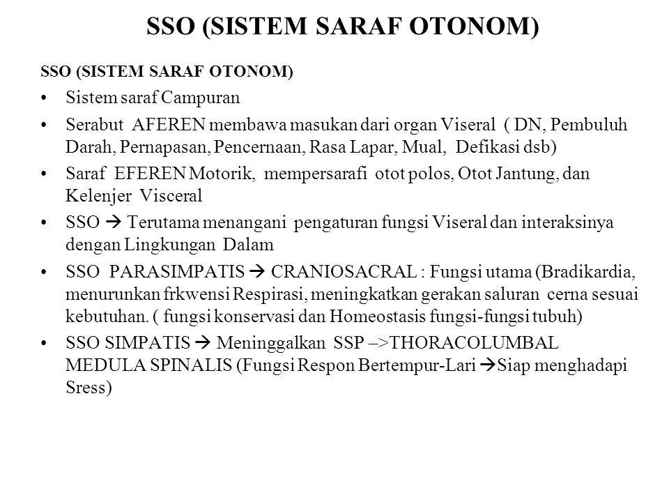 SSO (SISTEM SARAF OTONOM)