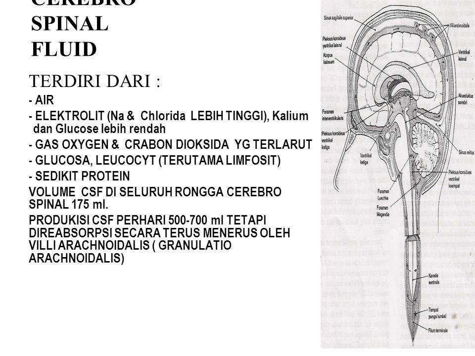 CEREBRO SPINAL FLUID TERDIRI DARI : - AIR
