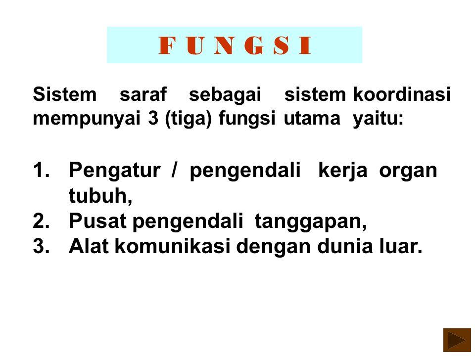 F U N G S I Pengatur / pengendali kerja organ tubuh,