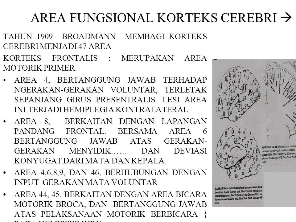 AREA FUNGSIONAL KORTEKS CEREBRI 