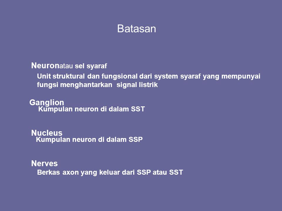 Batasan Neuron Ganglion Nucleus Nerves atau sel syaraf